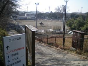 神奈川区 三ッ沢公園